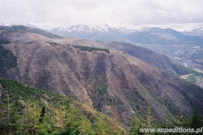 031_w_drodze_na_mt_st_helens_large_web_view