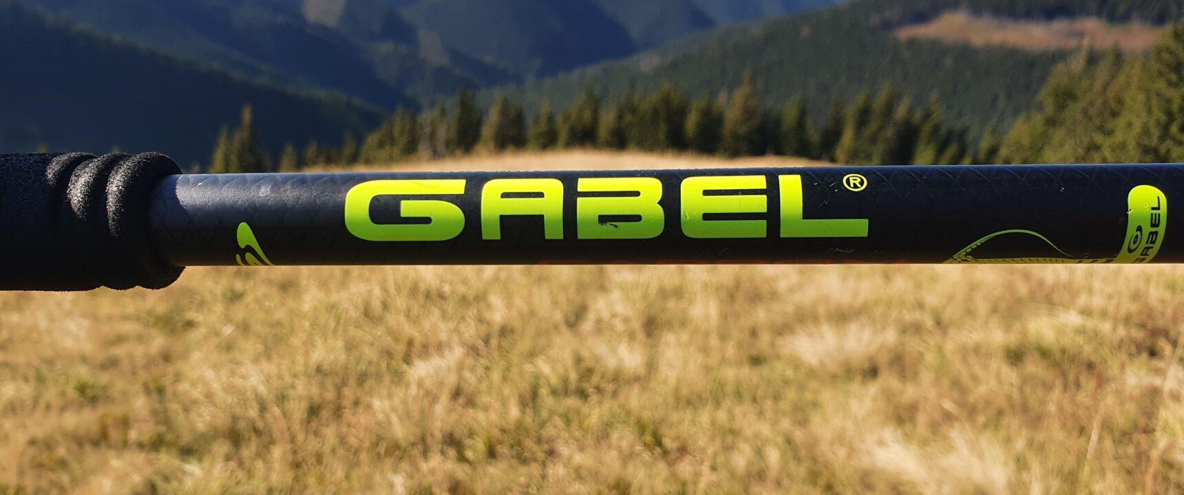 Gabel Carbon Force FLK